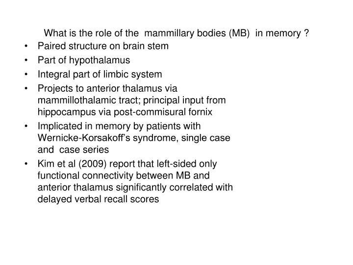 What is the role of the  mammillary bodies (MB)  in memory ?