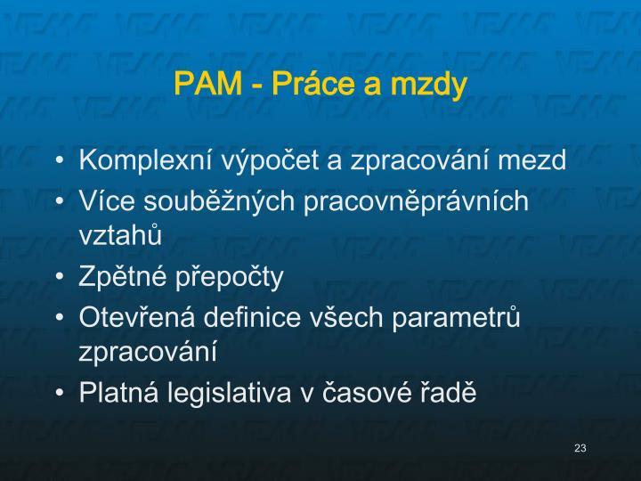 PAM - Práce a mzdy