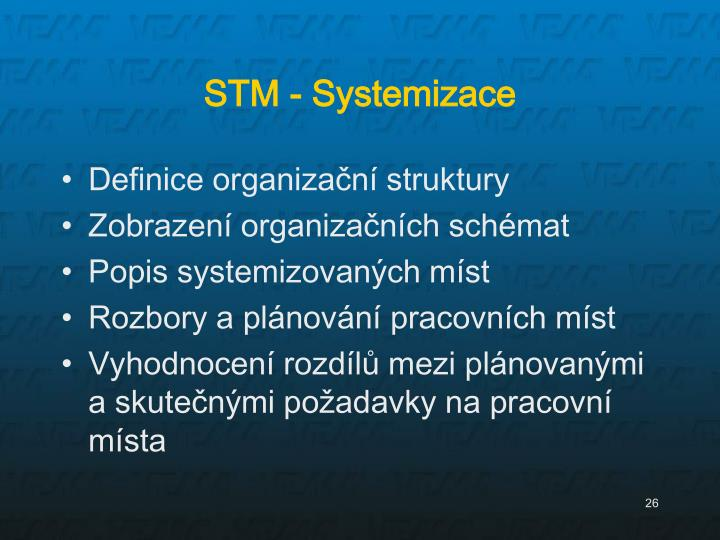 STM - Systemizace