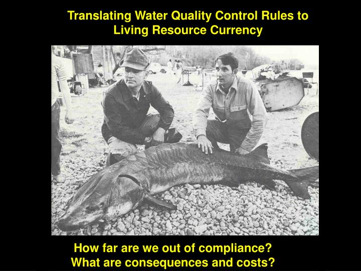 Translating Water Quality Control Rules to