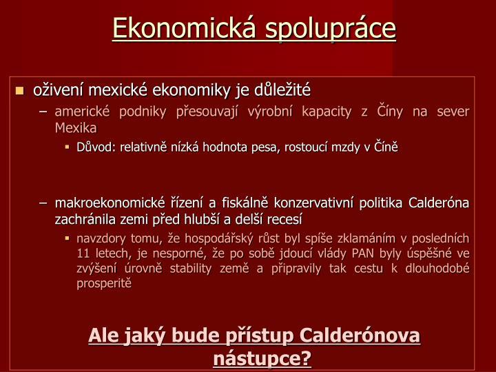 Ekonomická spolupráce