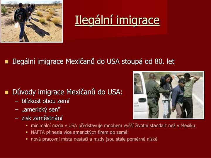 Ilegální imigrace