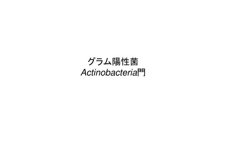 グラム陽性菌