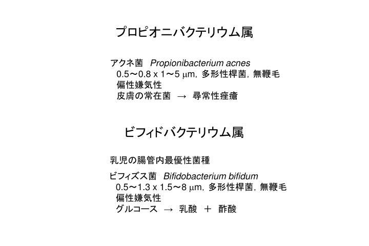 プロピオニバクテリウム属