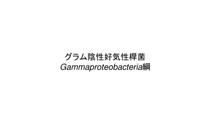 グラム陰性好気性桿菌