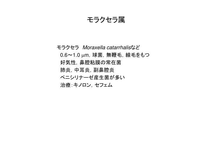 モラクセラ属