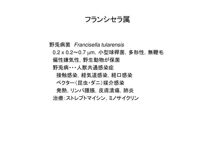 フランシセラ属