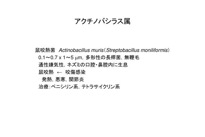 アクチノバシラス属