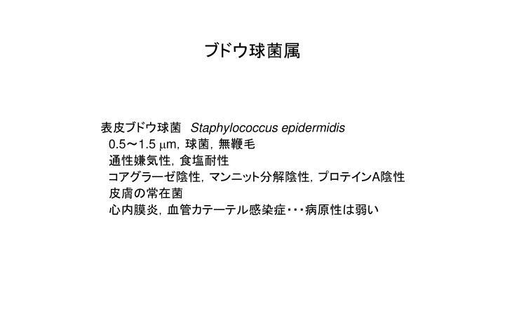 ブドウ球菌属