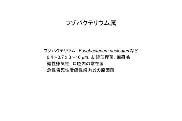 フゾバクテリウム属