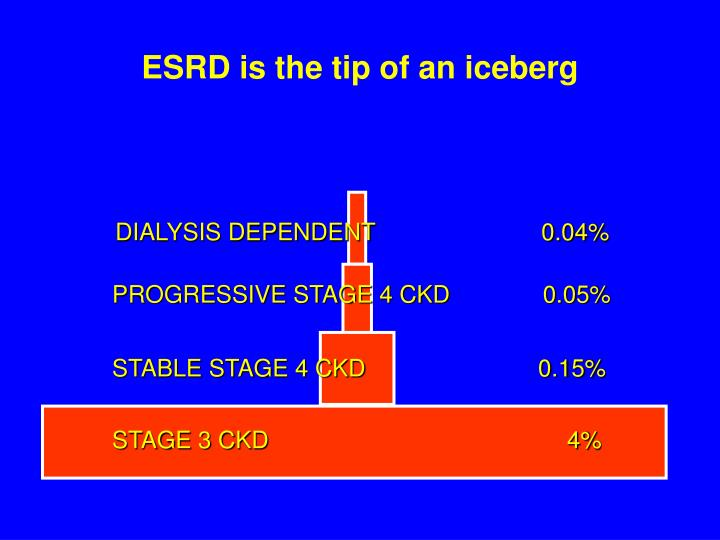ESRD is the tip of an iceberg