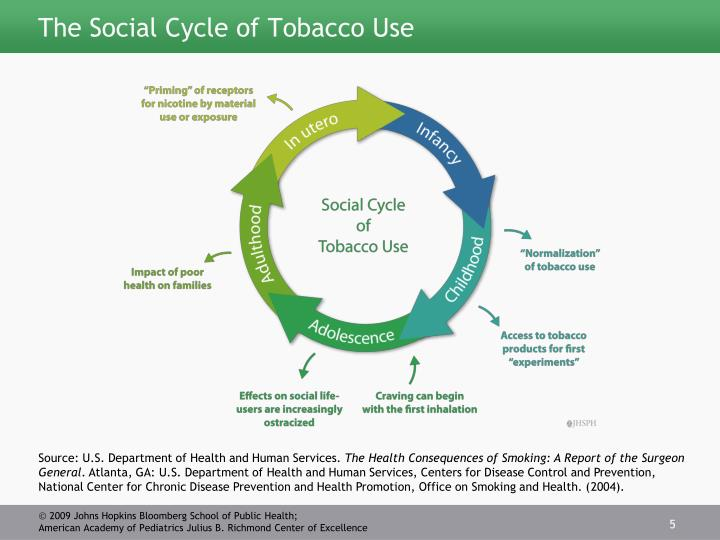 The Social Cycle of Tobacco Use