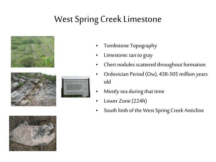 West Spring Creek Limestone