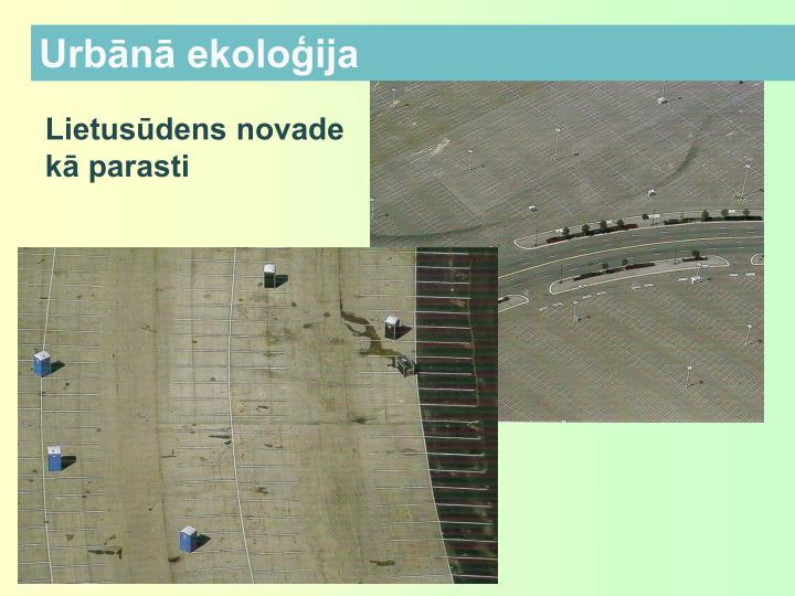 Urbānā ekoloģija