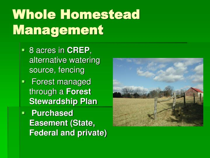 Whole Homestead Management