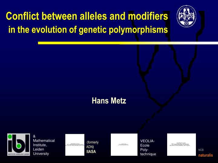 Conflict between alleles and modifiers