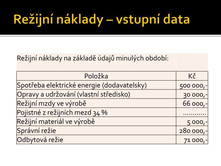 Režijní náklady – vstupní data