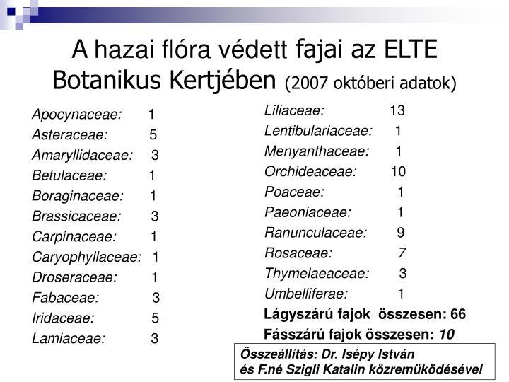 Apocynaceae: