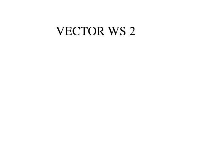 VECTOR WS 2