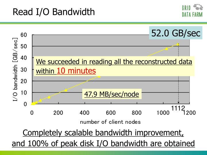 Read I/O Bandwidth