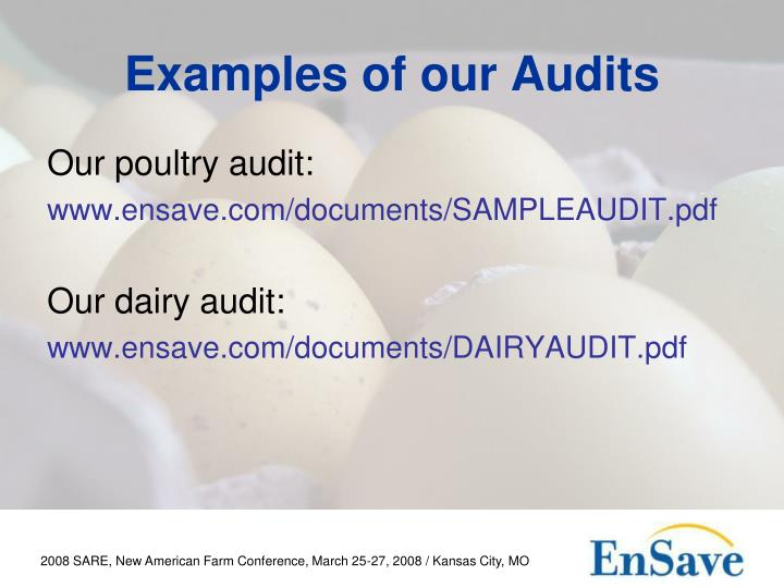 Examples of our Audits