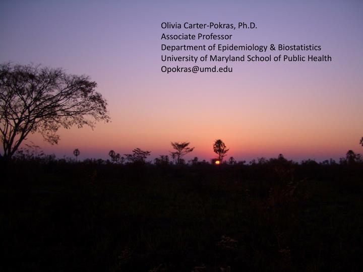 Olivia Carter-Pokras, Ph.D.