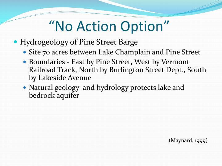 """No Action Option"""