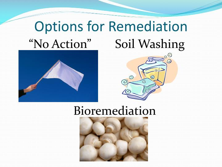 Options for Remediation