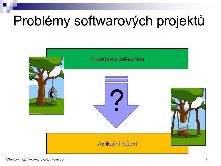 Problémy softwarových projektů