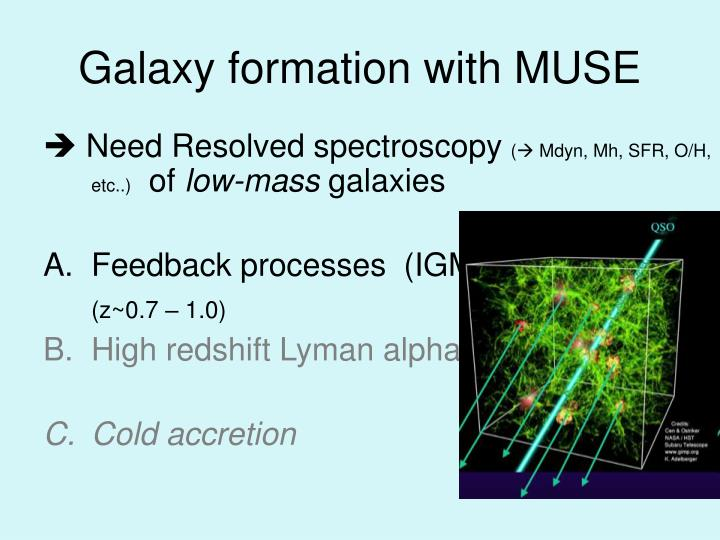 Galaxy formation with MUSE