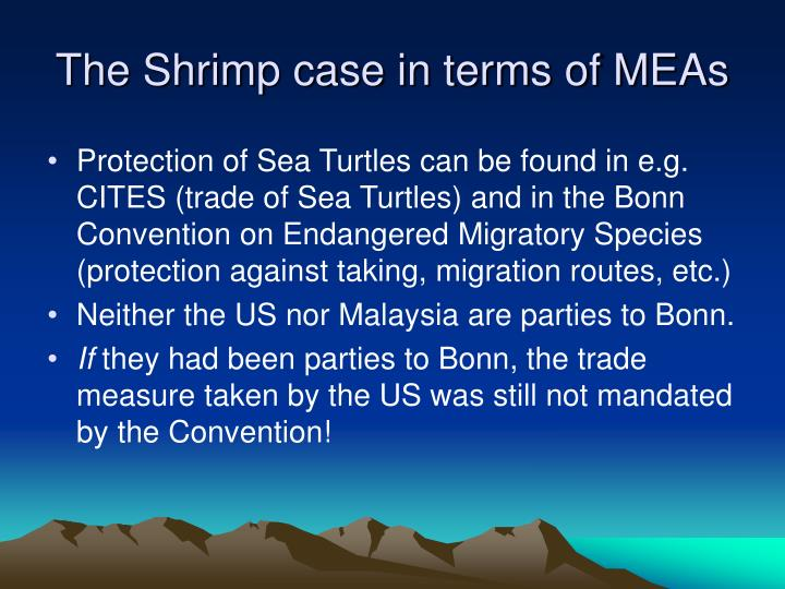 The Shrimp case in terms of MEAs