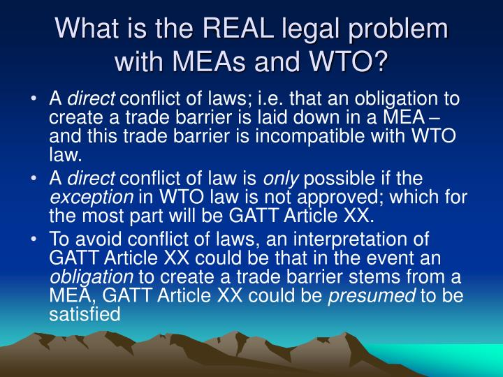 What is the real legal problem with meas and wto