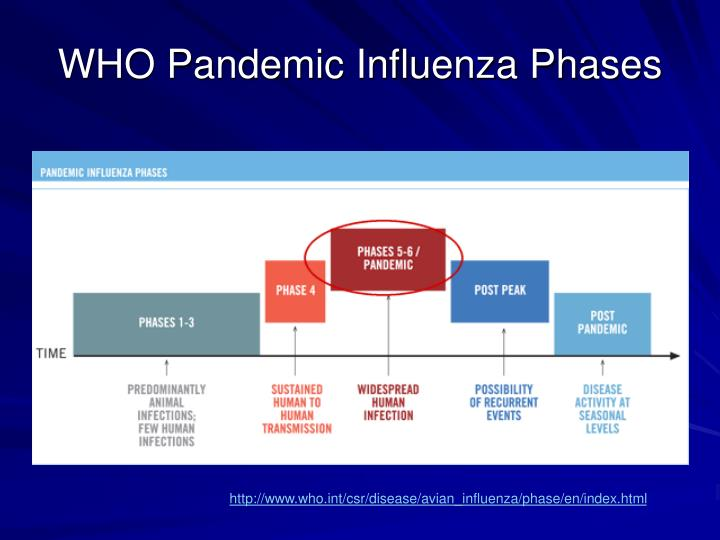 WHO Pandemic Influenza Phases