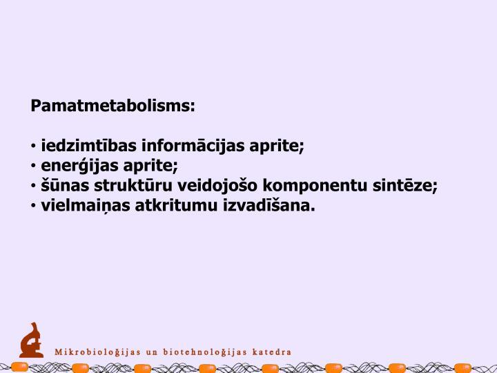 Pamatmetabolisms: