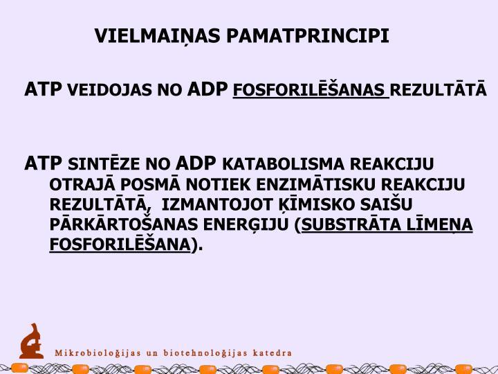 VIELMAIŅAS PAMATPRINCIPI