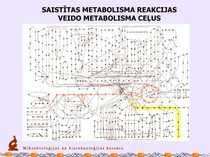 SAISTĪTAS METABOLISMA REAKCIJAS VEIDO METABOLISMA CEĻUS