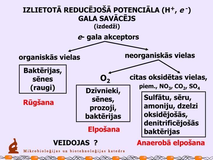 IZLIETOTĀ REDUCĒJOŠĀ POTENCIĀLA (H