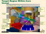 target region within core vessel
