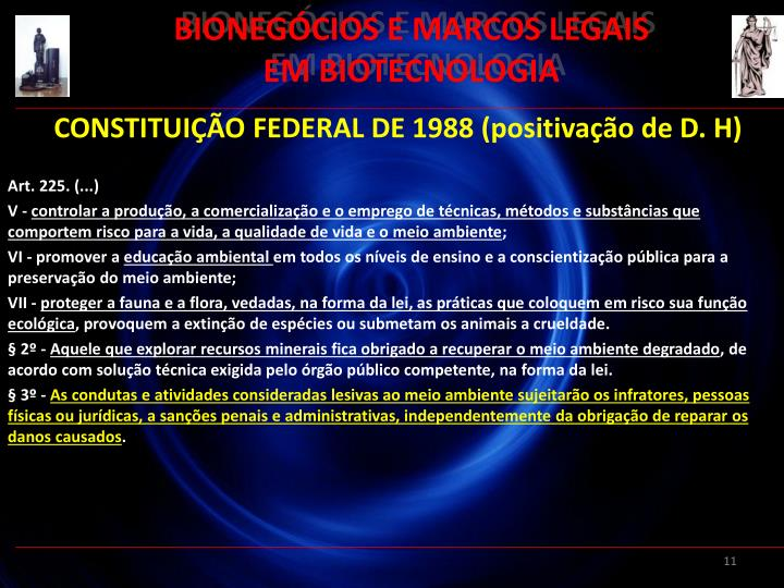 BIONEGÓCIOS E MARCOS LEGAIS