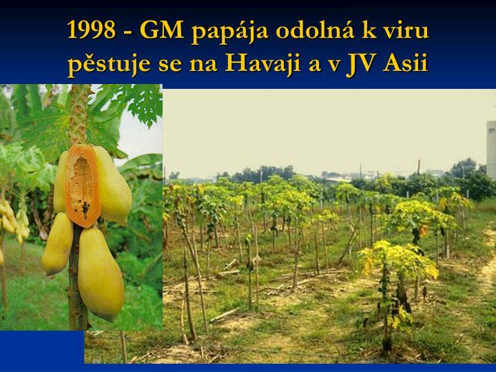 1998 - GM papája odolná k viru