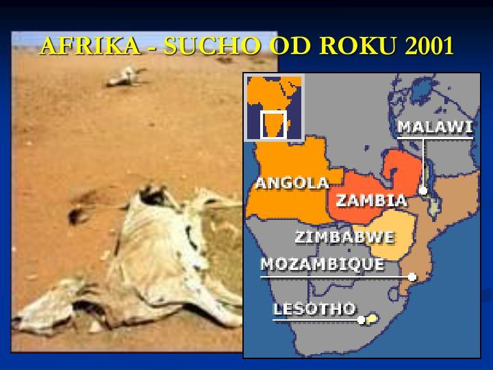 AFRIKA - SUCHO OD ROKU 2001