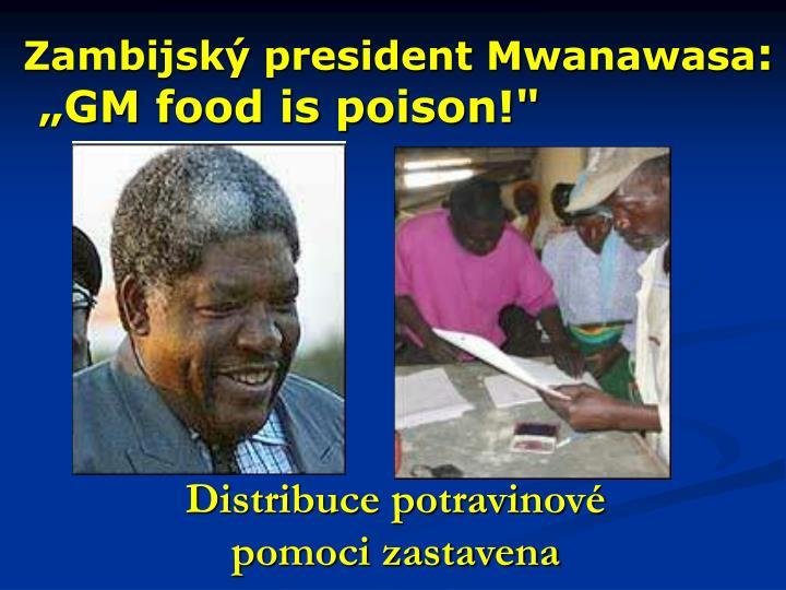 Zambijský president Mwanawasa