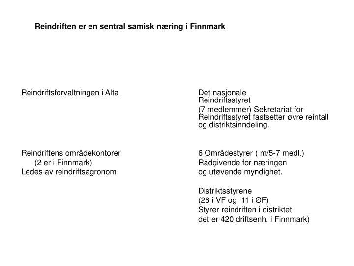Reindriften er en sentral samisk næring i Finnmark