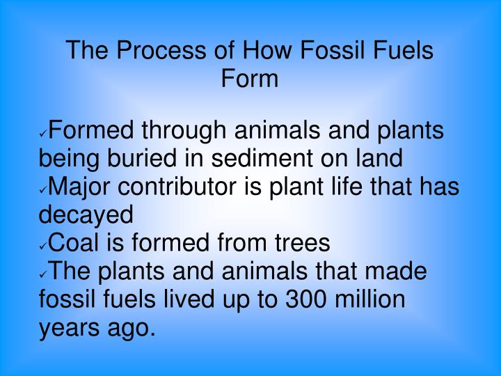 The Process of How Fossil Fuels Form