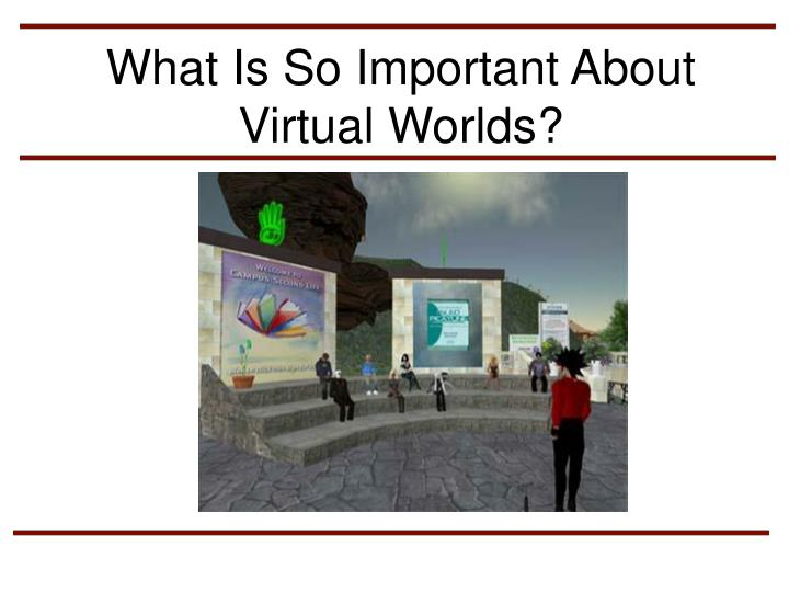 What Is So Important About Virtual Worlds?