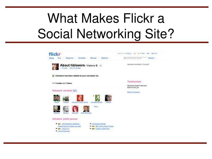 What Makes Flickr a