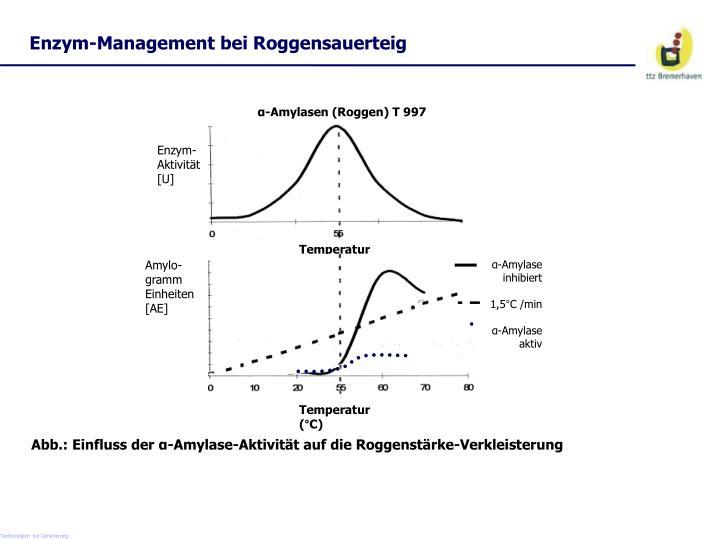 Enzym-Management bei Roggensauerteig
