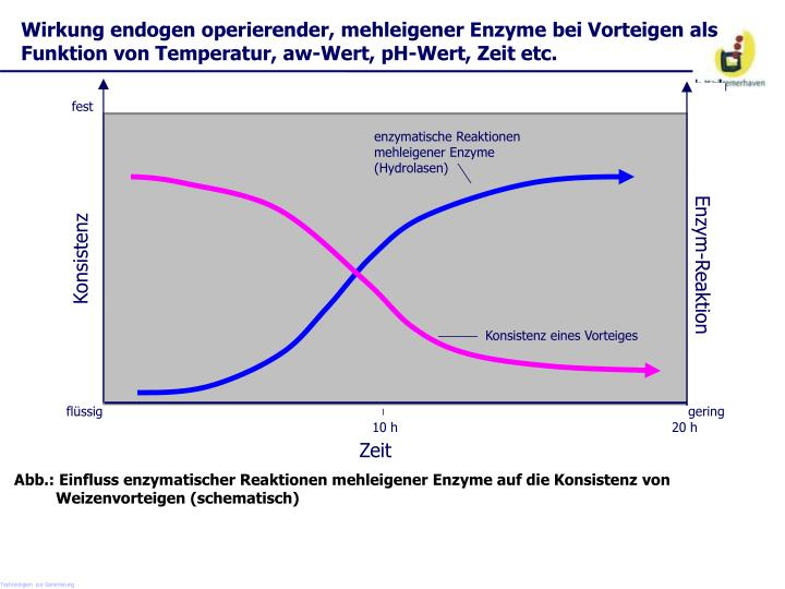 Wirkung endogen operierender, mehleigener Enzyme bei Vorteigen als Funktion von Temperatur, aw-Wert, pH-Wert, Zeit etc.