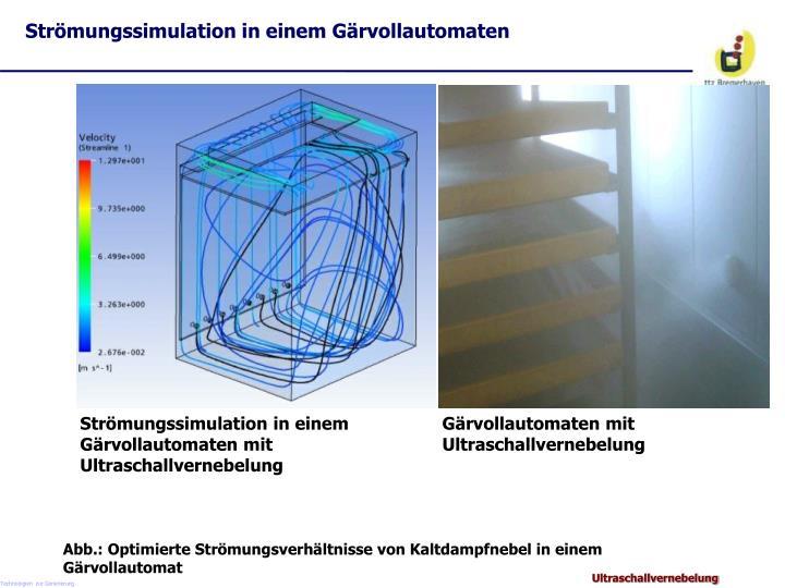 Strömungssimulation in einem Gärvollautomaten