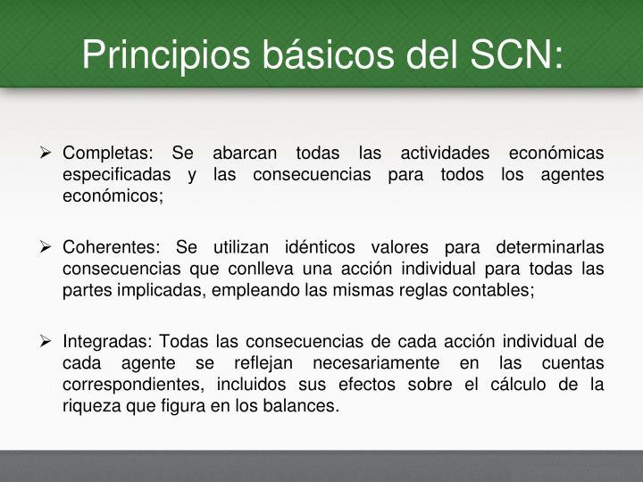 Principios básicos del SCN: